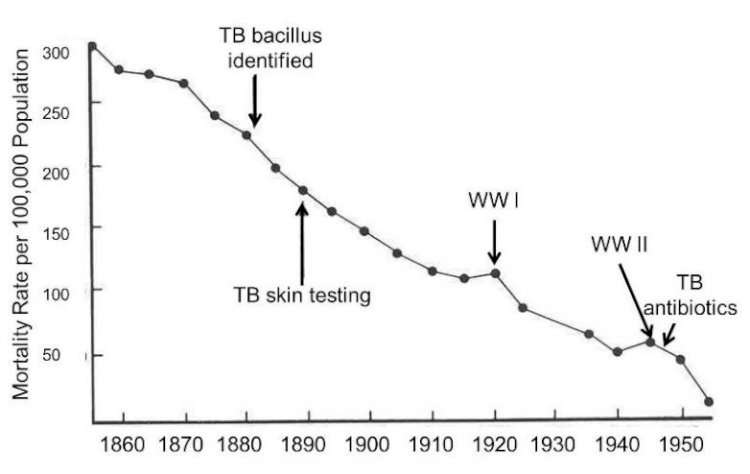 Graphic 1: Mortality rates due to tuberculosis between 1855 and 1955 in England and Wales [3].